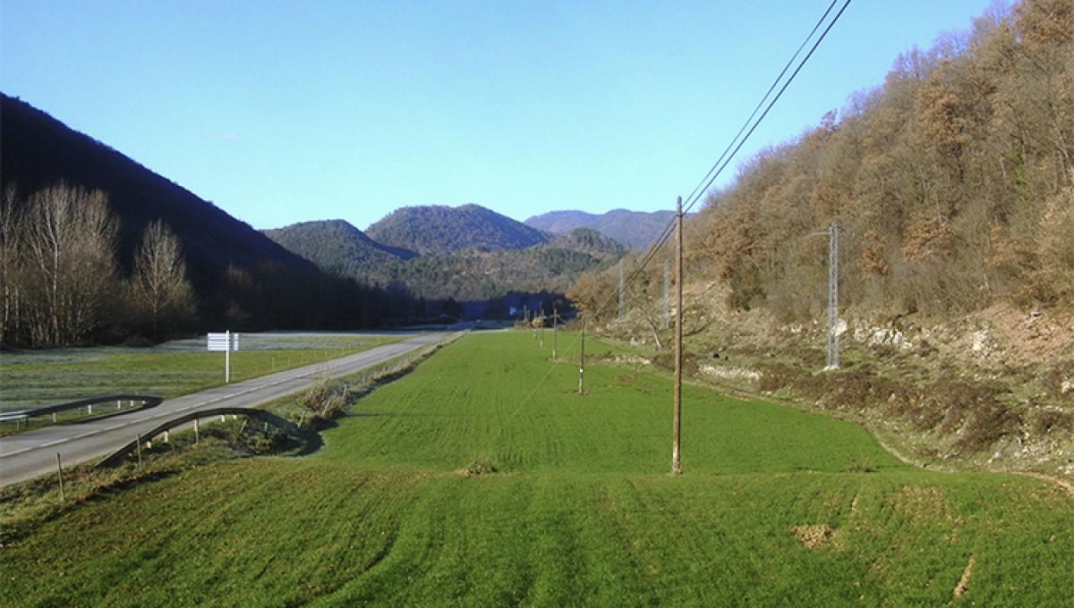 Les planes de la carretera de les Llosses, a l'alçada de la recta de Can Villaura, són l'indret projectat per l'Ajuntament de Ripoll per construir un nou poligon