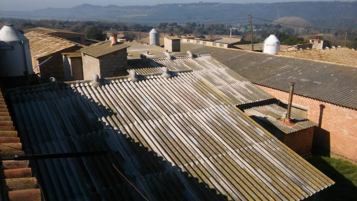 Teulats de les naus que s'han repoblat amb un miler de porcs al nucli de Buelaigua a Sant Martí d'Albars