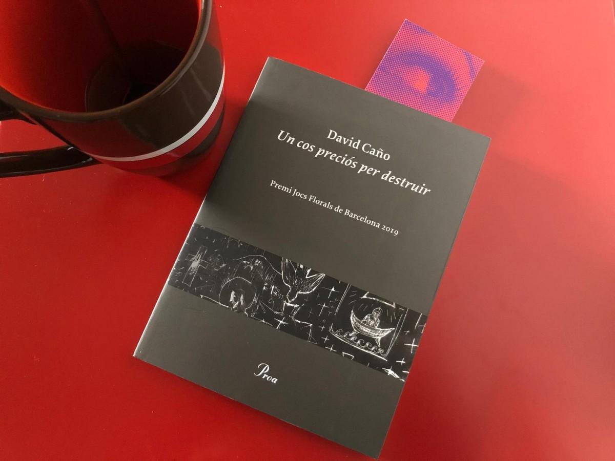 Miriam El Mouhadab ressenya 'Un cos preciós per destruir' (Edicions Proa, 2019), de David Caño