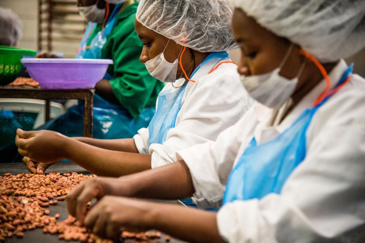 Greenforest Foods Ltd (Kenya), és una empresa que compra mel i fruits secs a 800 petits productors organitzats de la seva regió i els distribueix per tot l'Est del país.